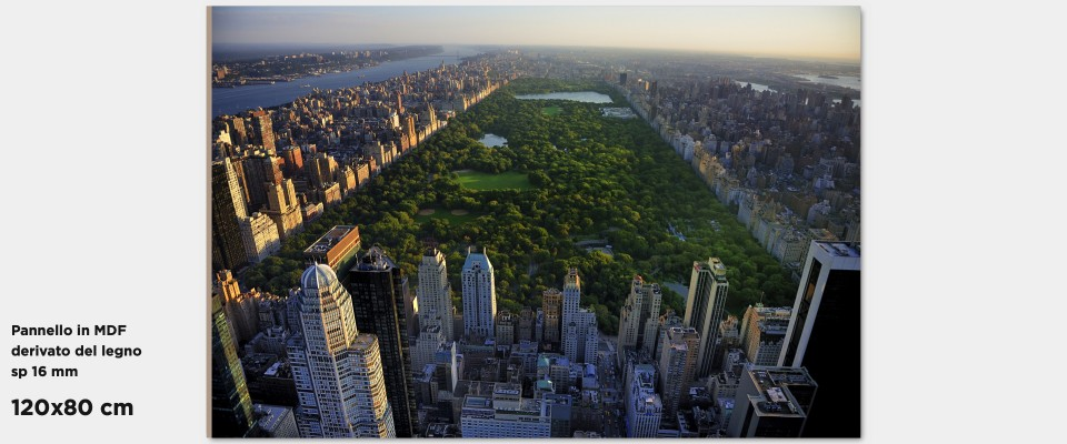 Stampa Quadro Manhattan Central Park