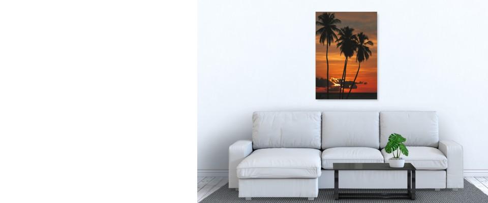 Online Quadro Tropical sunset