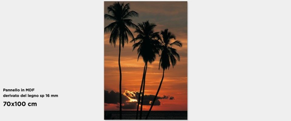 Quadro Tropical sunset