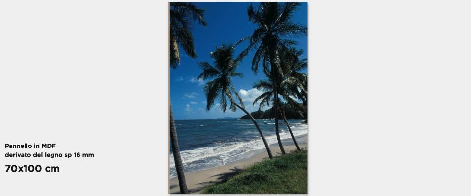 Quadro Tropical Palms