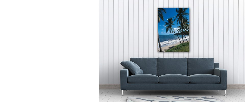 Online Quadro Tropical Palms